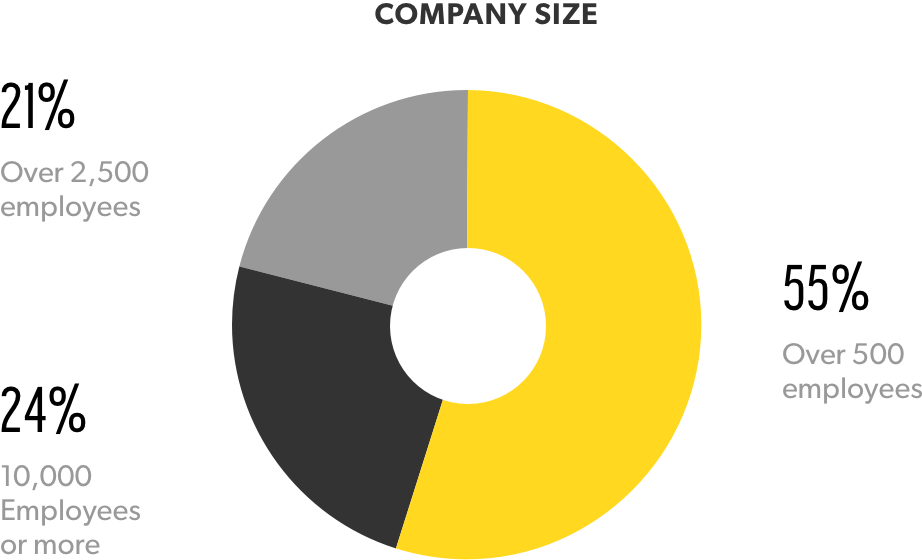 company-size-graph.png